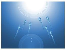 Sperm sayısı ve hareketi düşük çıktı, bu sayıyı nasıl artırabiliriz ?